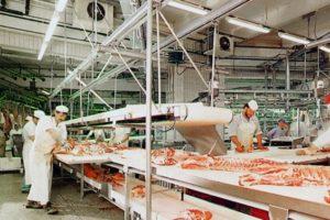 fabrica, abator - locuri de munca abator